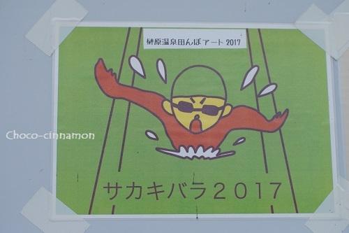 2017田んぼアート完成見取り図.JPG