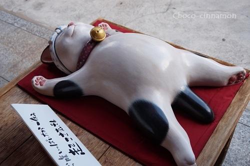 お腹いっぱいだからひと休み猫.JPG