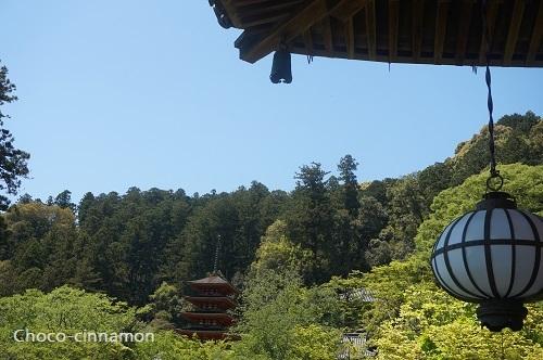 本堂から見る五重塔.JPG